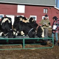 IL_Putney4_Farming2