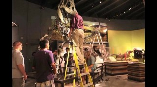 School's Paleontology Museum Engages Students in the Scientific Process