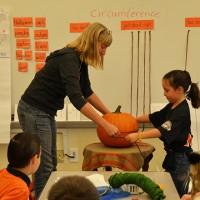 4.pumpkincircum