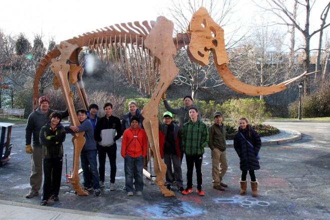mammoth-whole