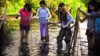 The Ala Wai Watershed Project