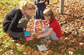 Old-Trail-School-Kindergarten-Wildlife-Habitat-1